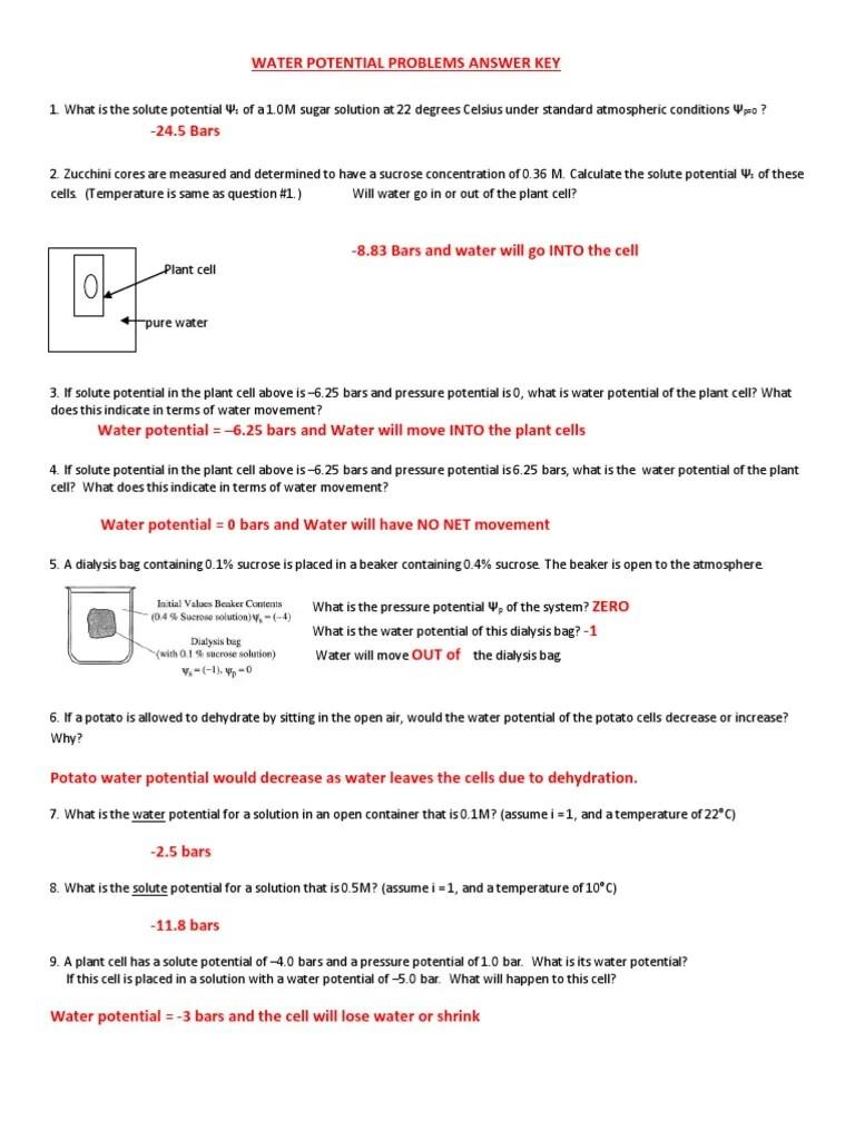 hight resolution of water potential worksheet key   Sucrose   Water