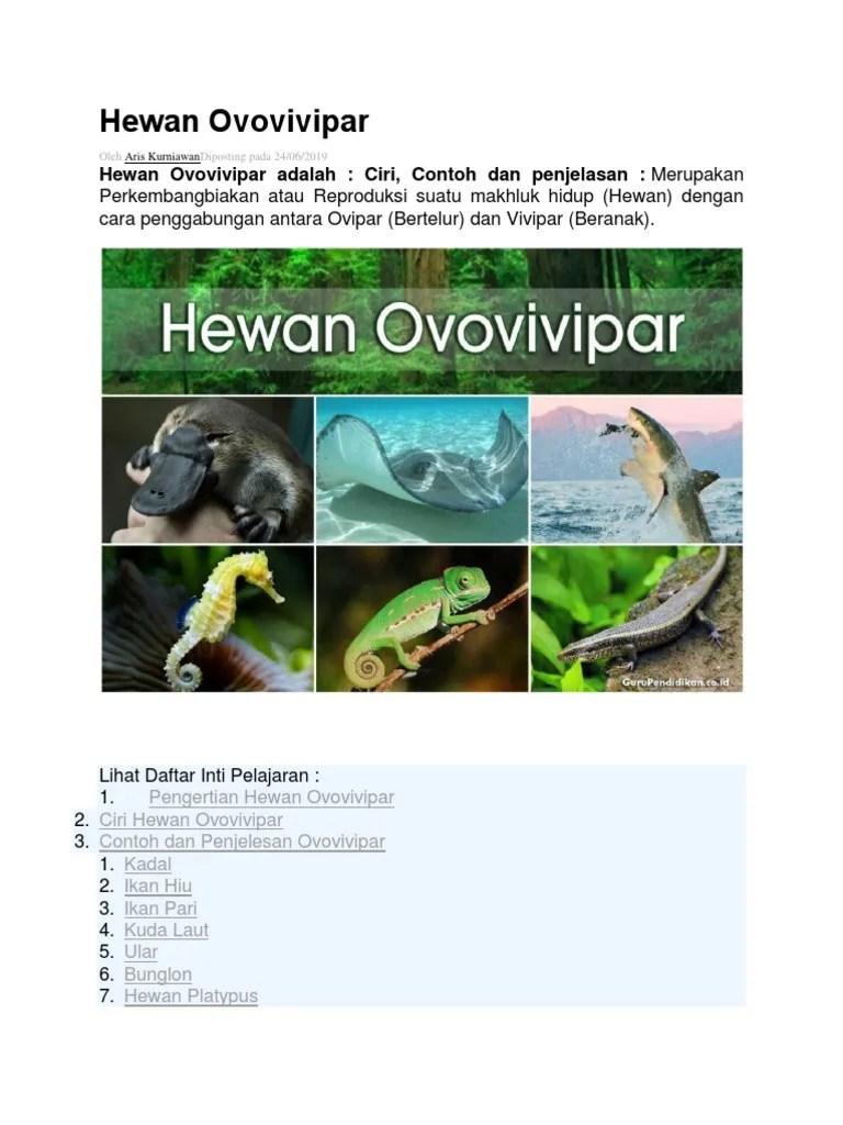 Platypus Ovovivipar : platypus, ovovivipar, Hewan, Ovovivipar.docx