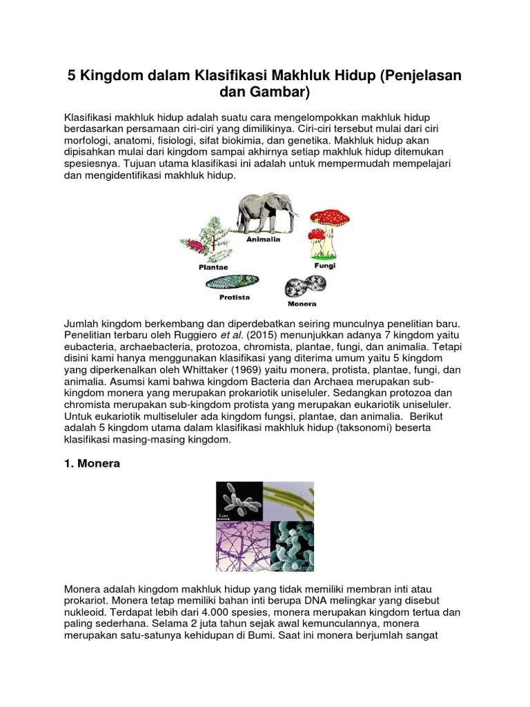 Klasifikasi Makhluk Hidup 5 Kingdom : klasifikasi, makhluk, hidup, kingdom, Kingdom, Dalam, Klasifikasi, Makhluk, Hidup.docx