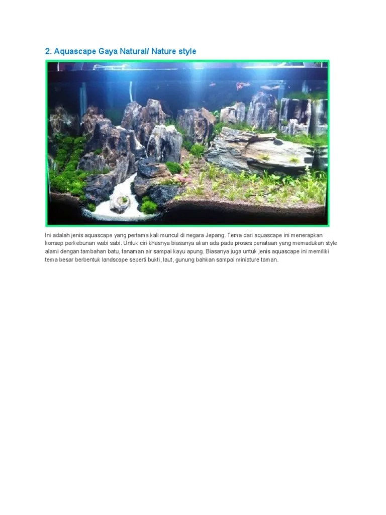 Aquascape Batu Kali : aquascape, Aquascape, Natural, Nature, Style