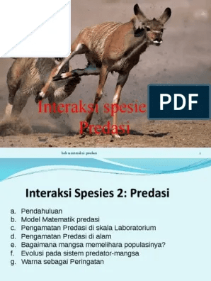 Gambar Predasi : gambar, predasi, Interaksi, Spesies, Predasi_2020.pptx