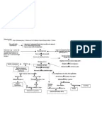 PATHOPHYSIOLOGY OF TYPHOID FEVER AND ACUTE GASTROENTERITIS