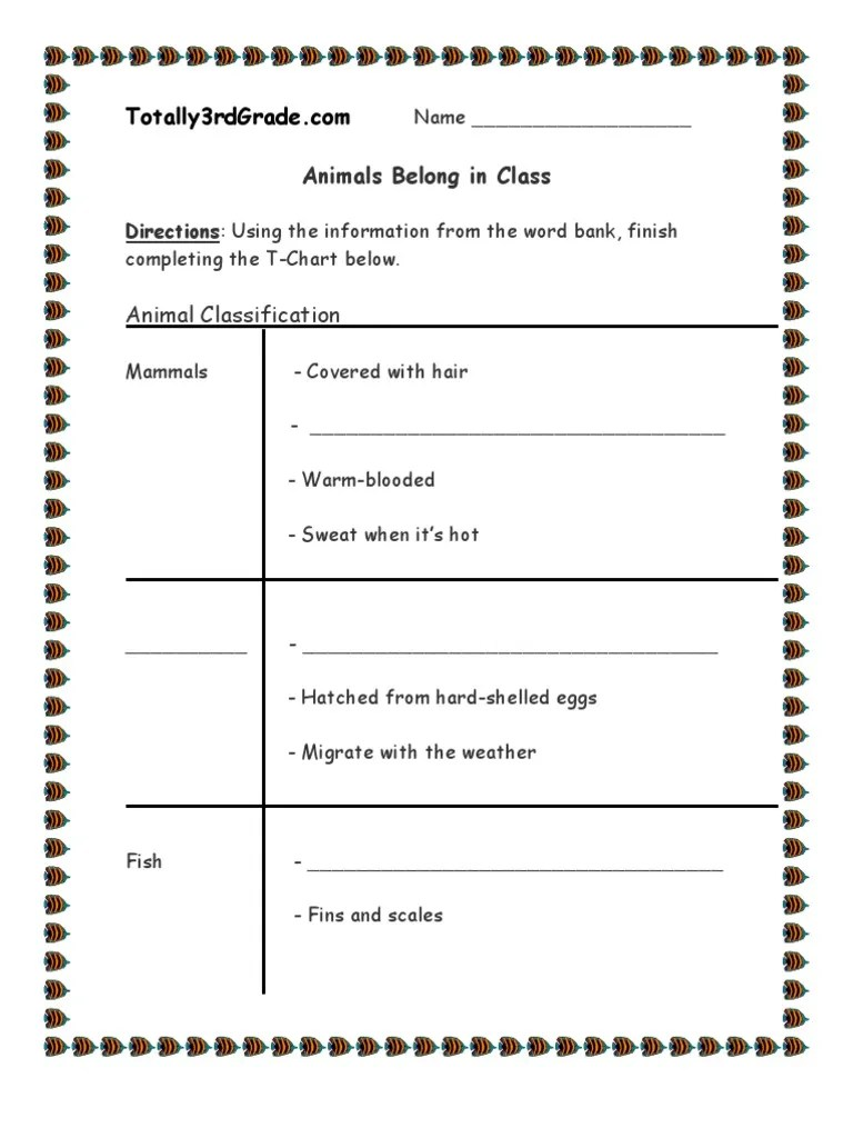3rd Grade   Animal Classification Worksheet   Reptile   Gill [ 1024 x 768 Pixel ]