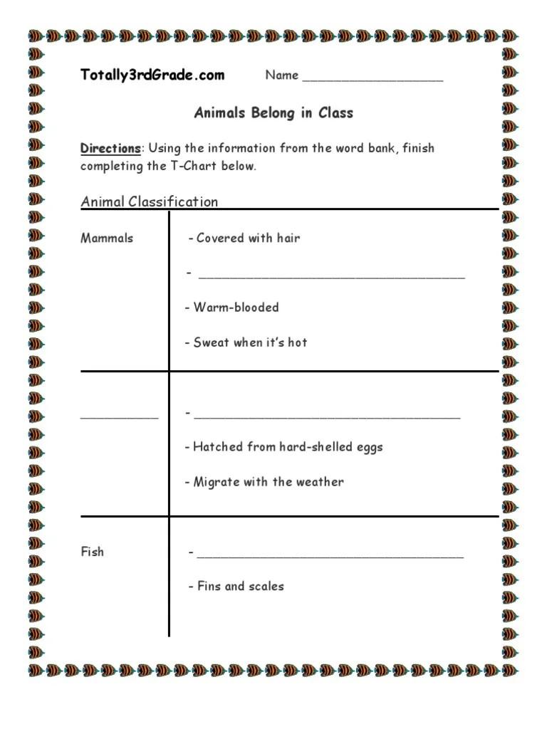 medium resolution of 3rd Grade   Animal Classification Worksheet   Reptile   Gill