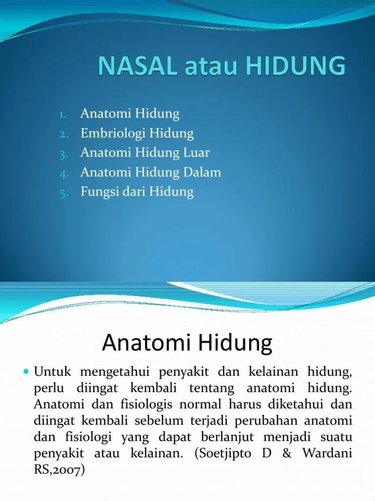 Anatomi Hidung Dan Fungsinya : anatomi, hidung, fungsinya, Nasal, Hidung