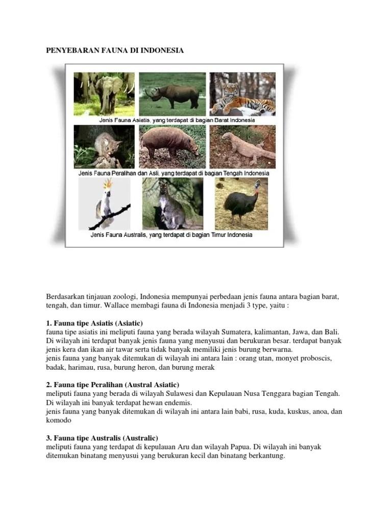 Fauna Bagian Barat Dan Penjelasannya : fauna, bagian, barat, penjelasannya, Gambar, Flora, Fauna, Bagian, Barat, Timur, Tengah, Paling, Pixabay