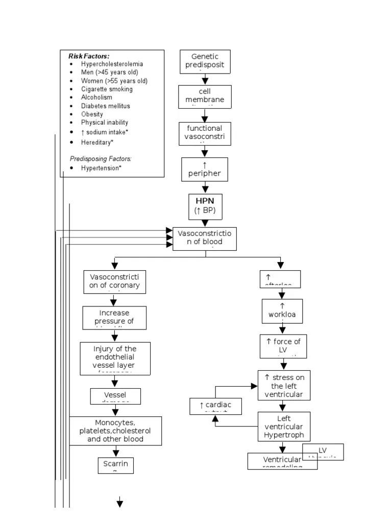 medium resolution of pathophysiology diagram of congestive heart failure heart heart failure