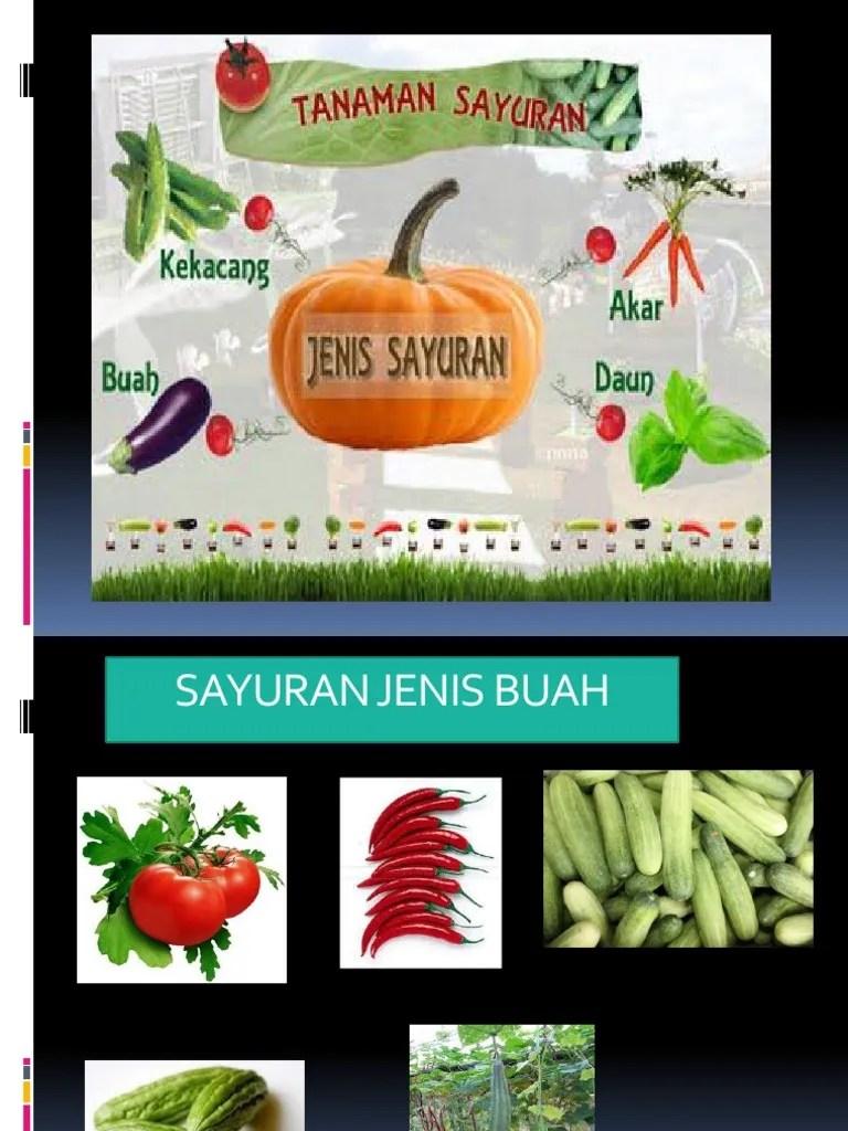 Contoh Sayuran Akar : contoh, sayuran, Power, Point