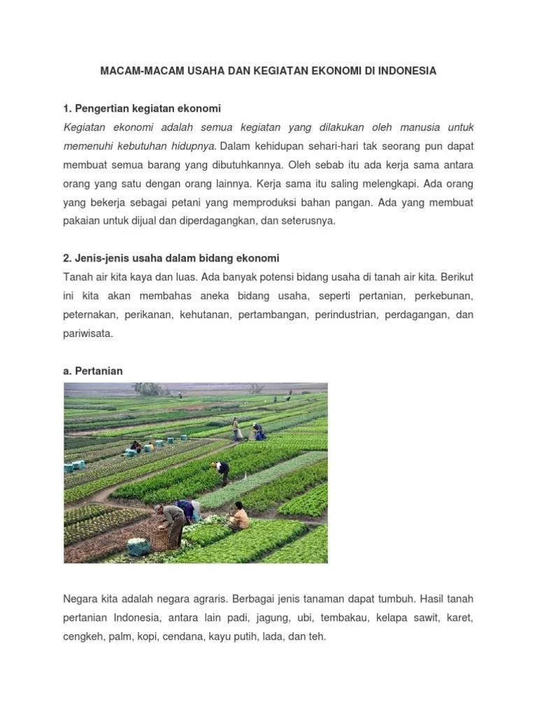 Gambar Usaha Ekonomi : gambar, usaha, ekonomi, Gambar, Jenis, Usaha, Kegiatan, Ekonomi, Indonesia