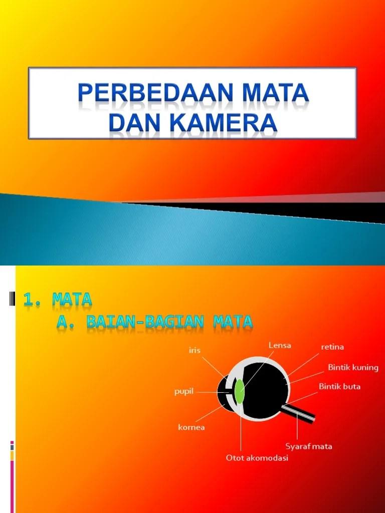 Persamaan Dan Perbedaan Mata Dan Kamera : persamaan, perbedaan, kamera, Perbedaan, Kamera