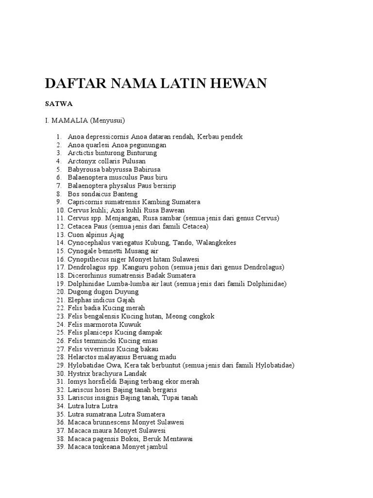 Nama Latin Makhluk Hidup : latin, makhluk, hidup, Gambar, Hewan, Latin, Terbaru