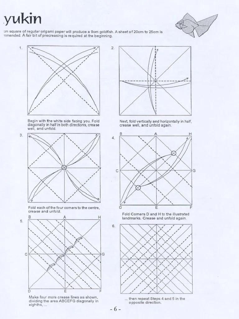 diagram of goldfish [ 768 x 1024 Pixel ]