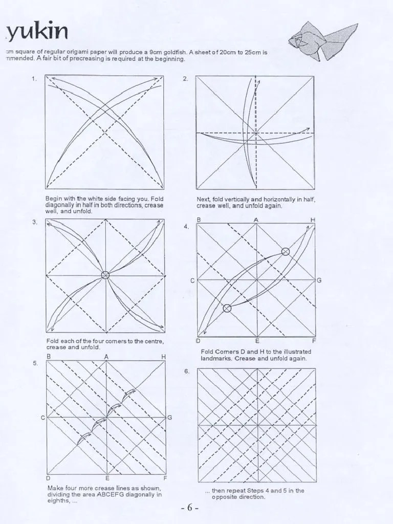 hight resolution of diagram of goldfish