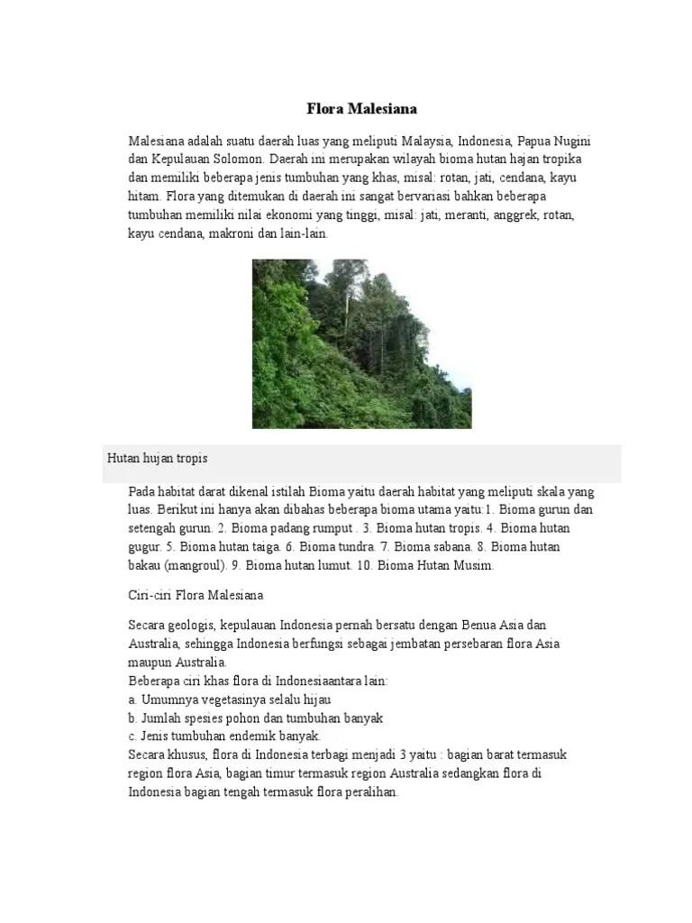 Persebaran Hutan Musim Di Indonesia : persebaran, hutan, musim, indonesia, Flora, Malesiana