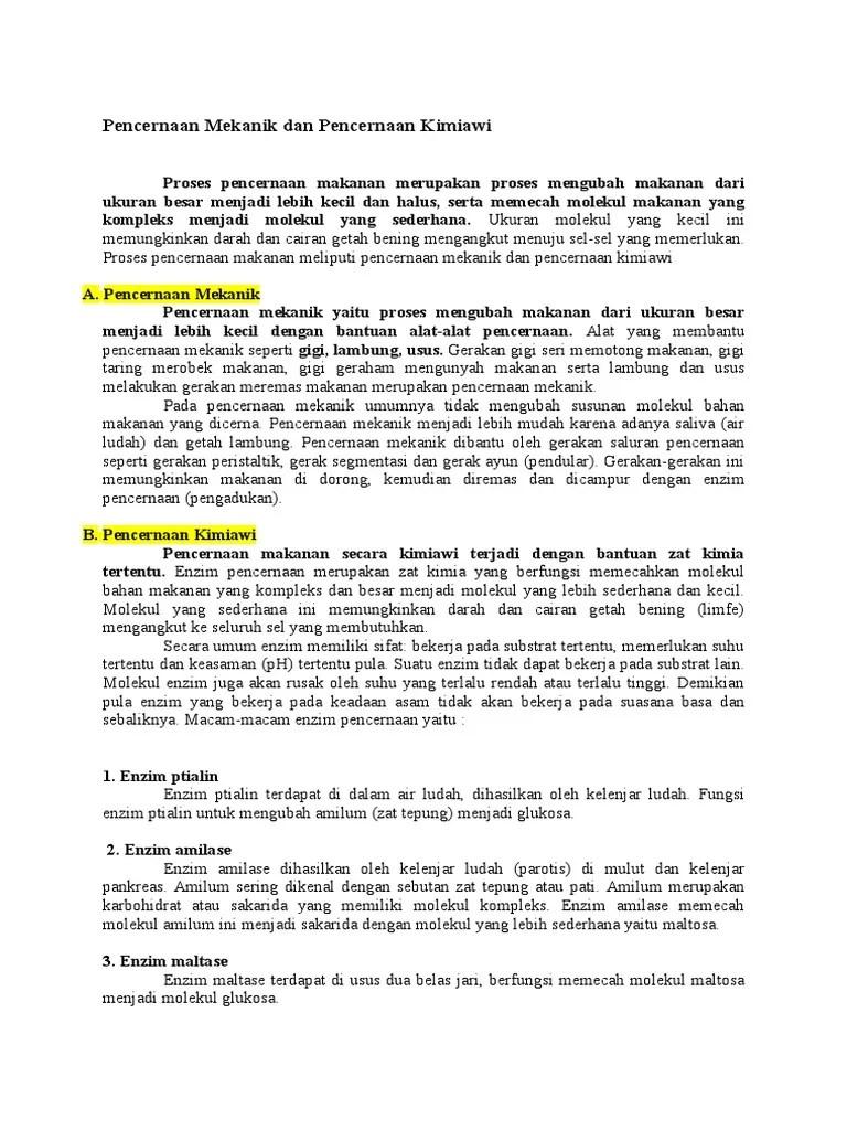 Pencernaan Kimiawi Dan Mekanik : pencernaan, kimiawi, mekanik, Pencernaan, Mekanik, Kimiawi
