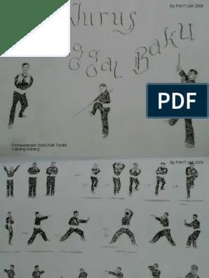 Buku Senam Dasar Psht : senam, dasar, Download, Jurus, Senam