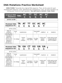 Worksheet Mutations Practice Answer Key - Kidz Activities
