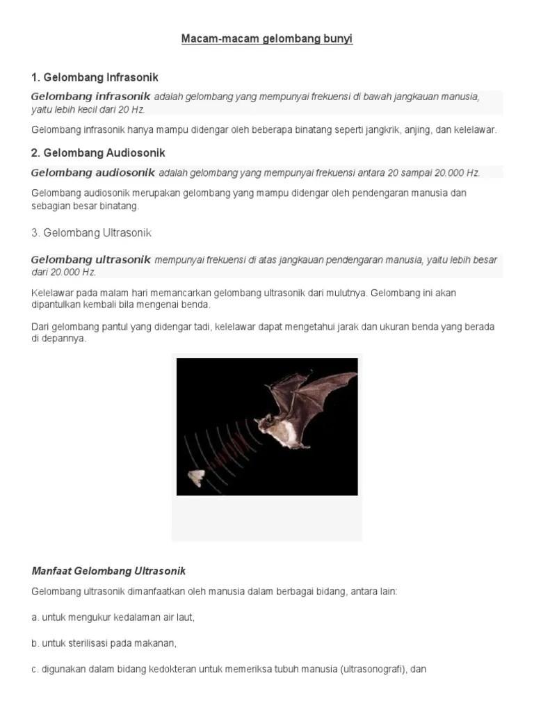 Hewan Audiosonik : hewan, audiosonik, Macam-macam, Gelombang, Bunyi