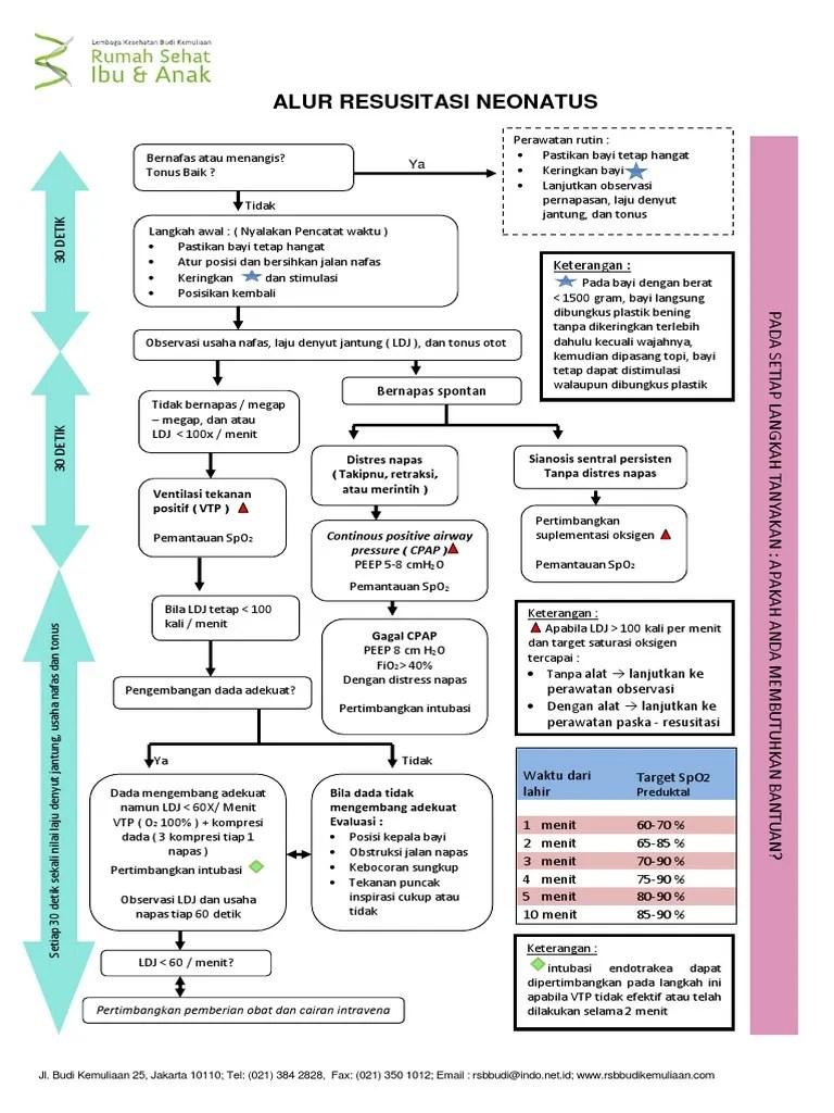 Resusitasi Neonatus Idai 2018 : resusitasi, neonatus, Resusitasi, Neonatus