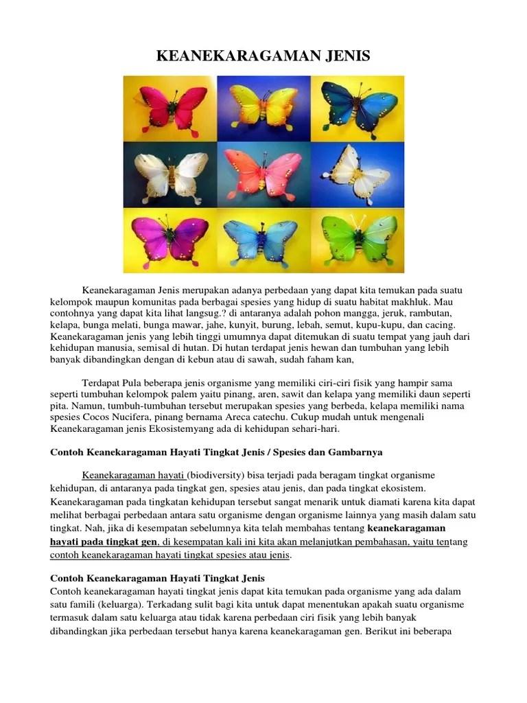 Contoh Keanekaragaman Hayati Tingkat Jenis : contoh, keanekaragaman, hayati, tingkat, jenis, KEANEKARAGAMAN, JENIS