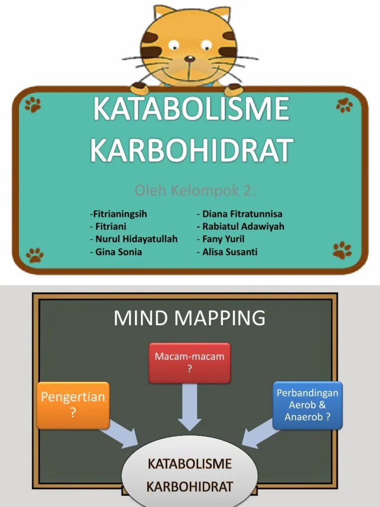 Proses Katabolisme Karbohidrat : proses, katabolisme, karbohidrat, KATABOLISME, KARBOHIDRAT