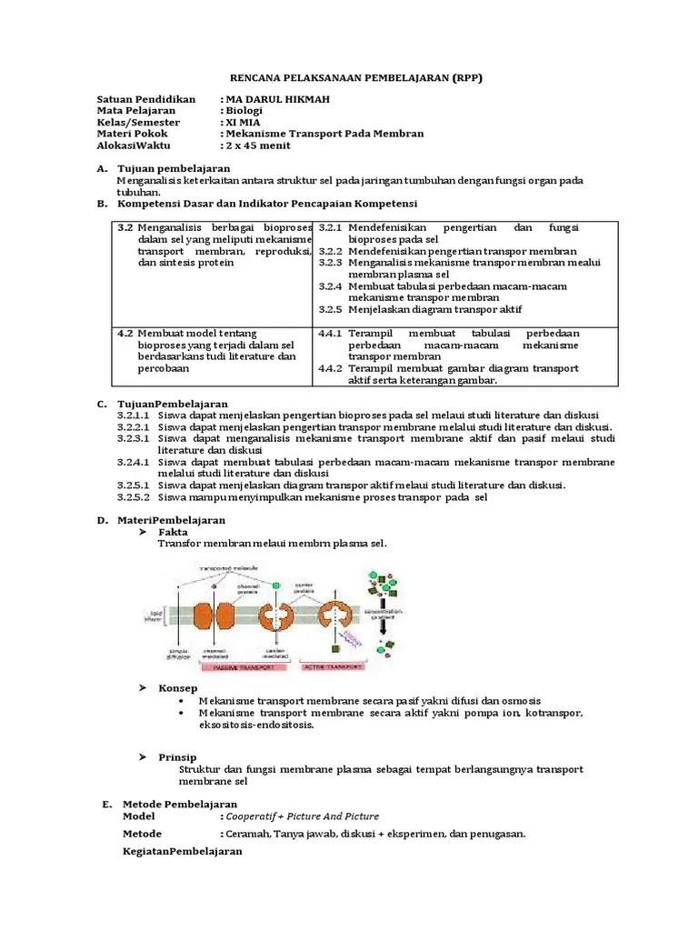 Perbedaan Transpor Aktif Dan Pasif : perbedaan, transpor, aktif, pasif, Pengertian, Transport, Aktif