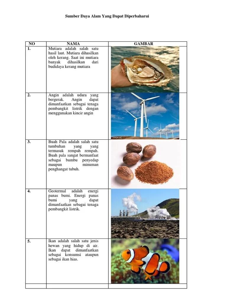 Sumber Daya Alam Dapat Diperbaharui : sumber, dapat, diperbaharui, Sumber, Dapat, Diperbaharui
