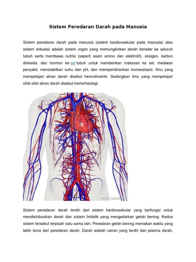 Peredaran Darah Getah Bening : peredaran, darah, getah, bening, Sistem, Peredaran, Darah, Manusia.docx