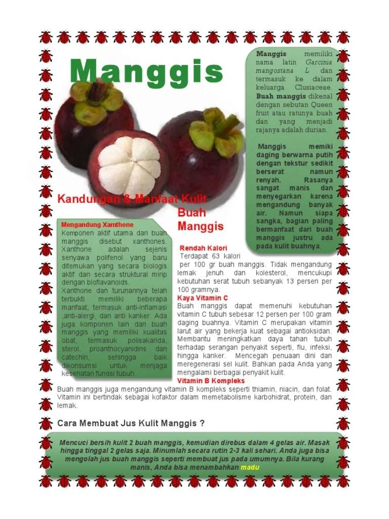 Cara Memasak Kulit Manggis : memasak, kulit, manggis, Manfaat, Kulit, Manggis, Membuat