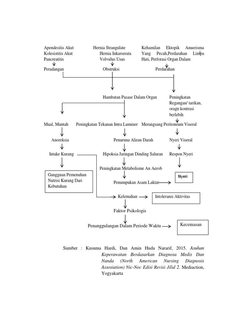 Patofisiologi Kolik Abdomen : patofisiologi, kolik, abdomen, Pathway, Kolik, Abdomen