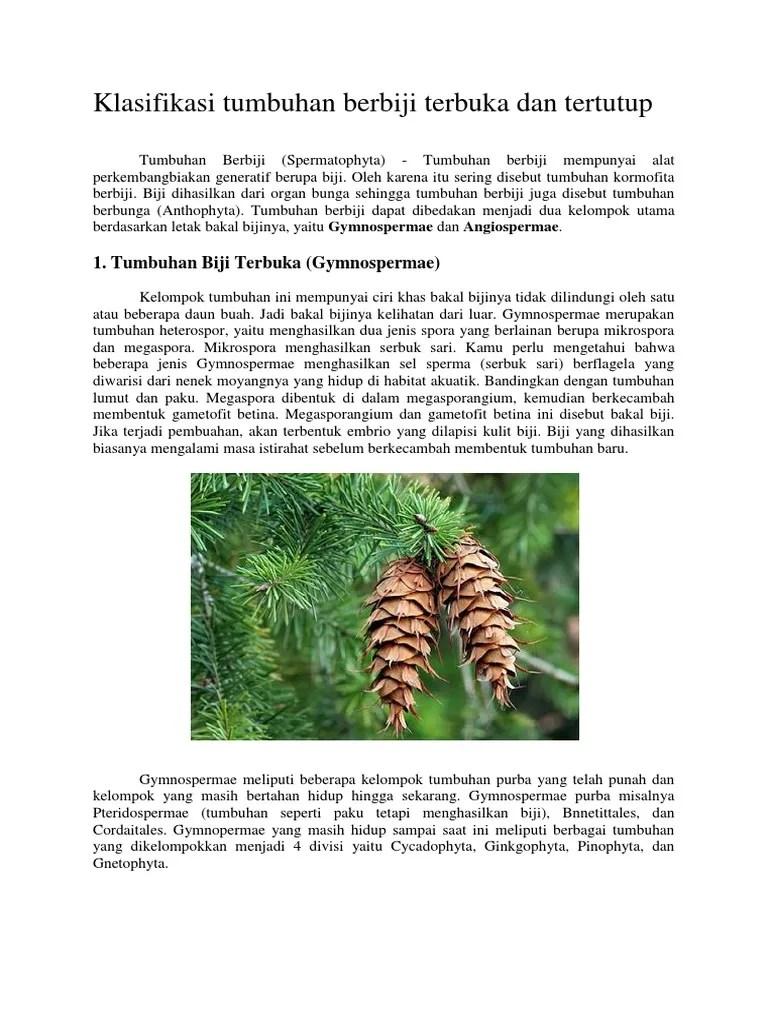 Contoh Tumbuhan Berbiji Terbuka Dan Tertutup : contoh, tumbuhan, berbiji, terbuka, tertutup, Klasifikasi, Tumbuhan, Berbiji, Terbuka, Tertutup