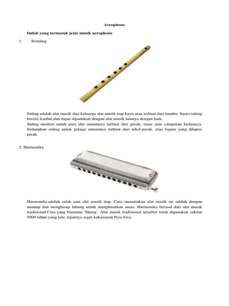 Harmonika Termasuk Alat Musik : harmonika, termasuk, musik, Musik