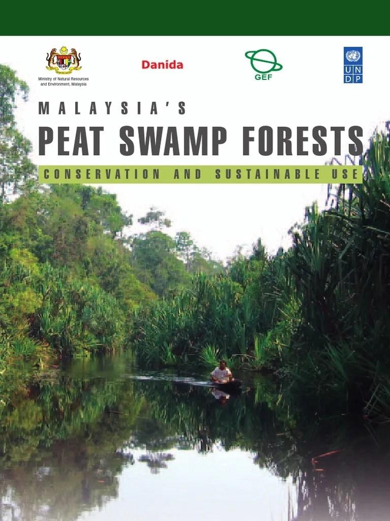 medium resolution of contoh diagram alir mangrove