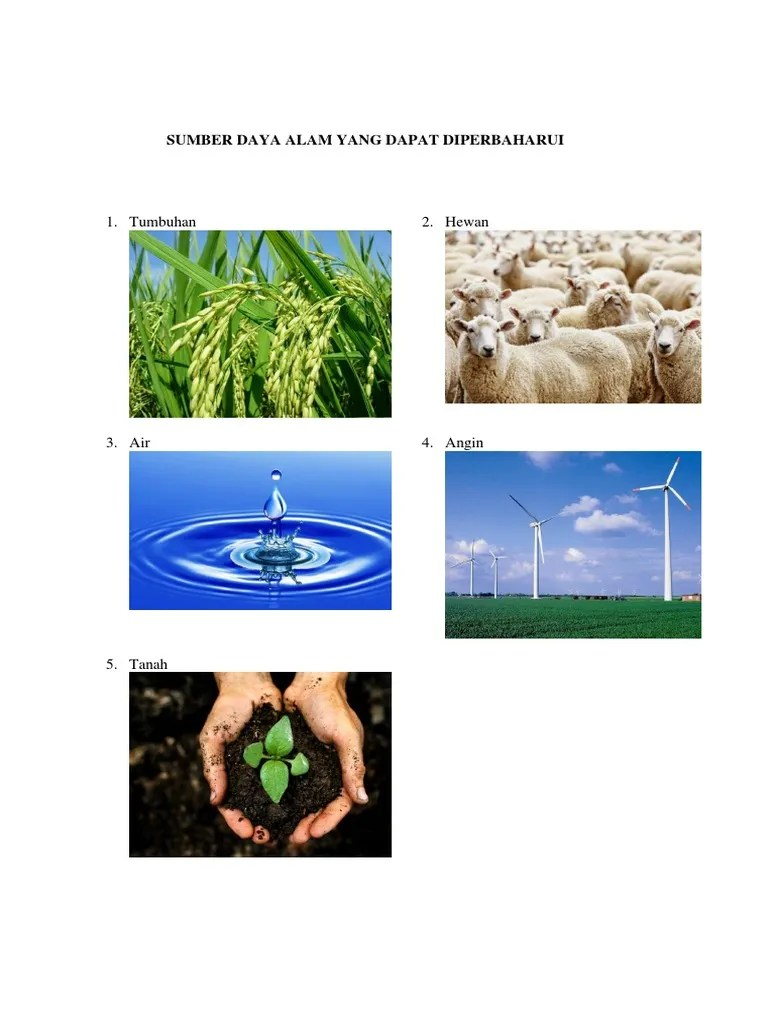 Sumber Daya Alam Dapat Diperbaharui : sumber, dapat, diperbaharui, Sumber, Dapat, Diperbaharui, Tidak