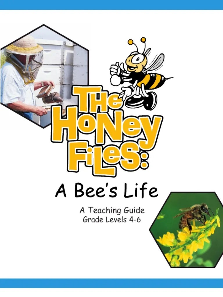 hight resolution of Worksheets Honey   Honey Bee   Bees