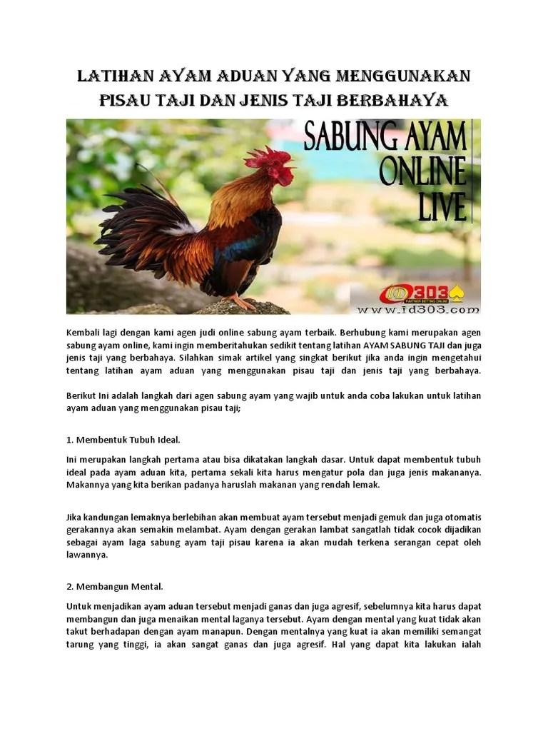 Cara Membuat Ayam Bangkok Gemuk : membuat, bangkok, gemuk, Latihan, Aduan, Menggunakan, Pisau, Jenis, Berbahaya