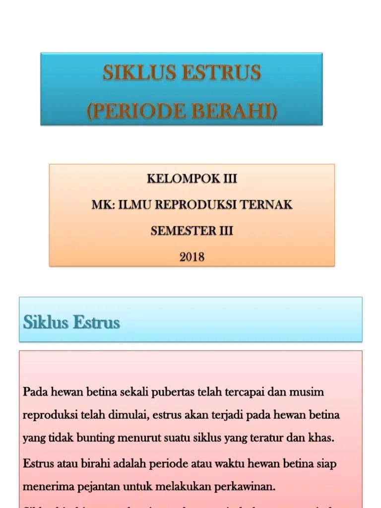 Siklus Estrus : siklus, estrus, SIKLUS, ESTRUS
