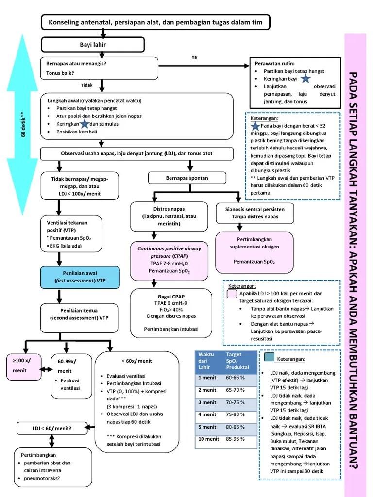 Resusitasi Neonatus Idai 2018 : resusitasi, neonatus, Corrected], Resusitasi, Revisi, 2017.pdf