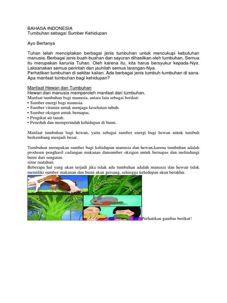 Manfaat Hewan Dan Tumbuhan : manfaat, hewan, tumbuhan, Koleksi, Gambar, Manfaat, Hewan, Tumbuhan, Manusia, Terbaik