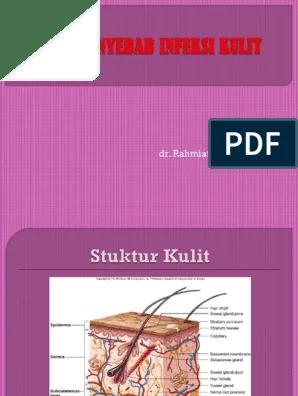 Infeksi Virus Pada Kulit.pptx | Smallpox | Herpes Simplex