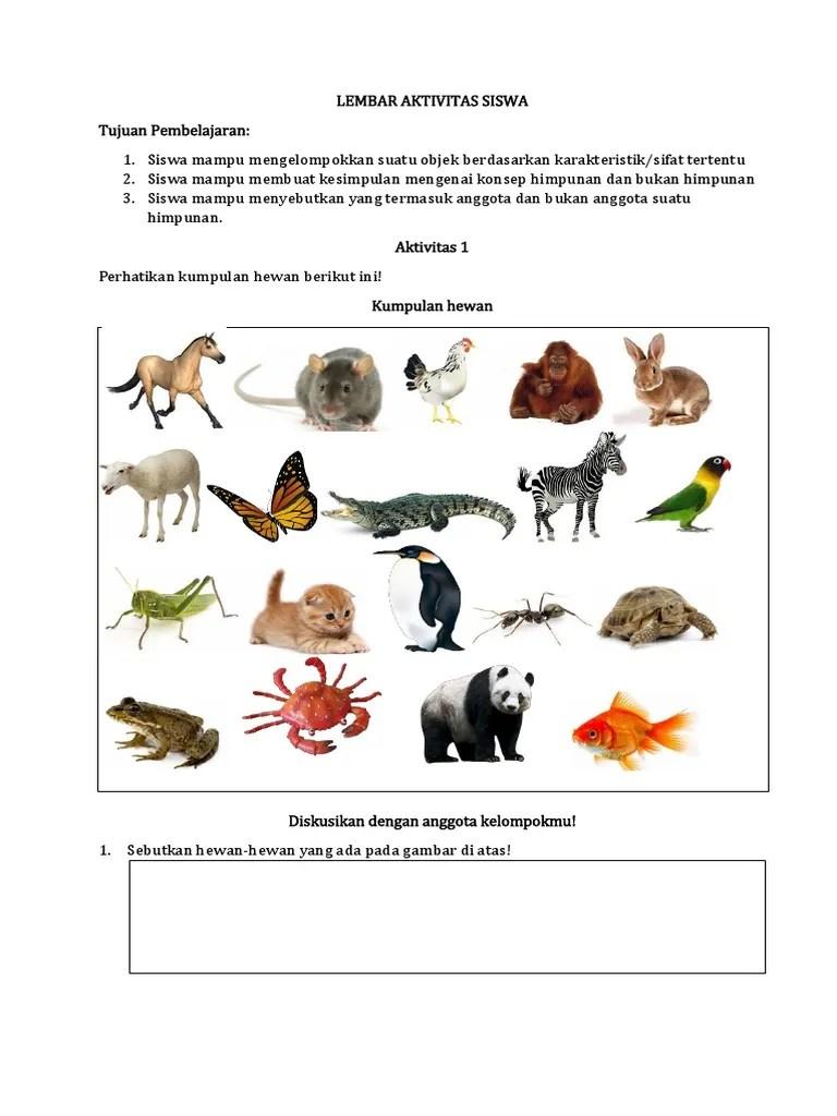 Gambar Hewan Berkaki 2 : gambar, hewan, berkaki, Adalah, Himpunan, Hewan, Berkaki