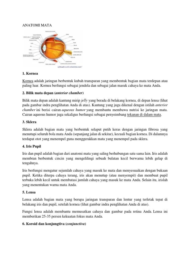 Fungsi Lensa Pada Mata : fungsi, lensa