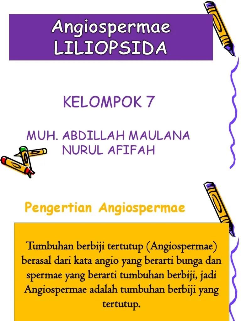 Angiospermae Adalah : angiospermae, adalah, Angioapermae