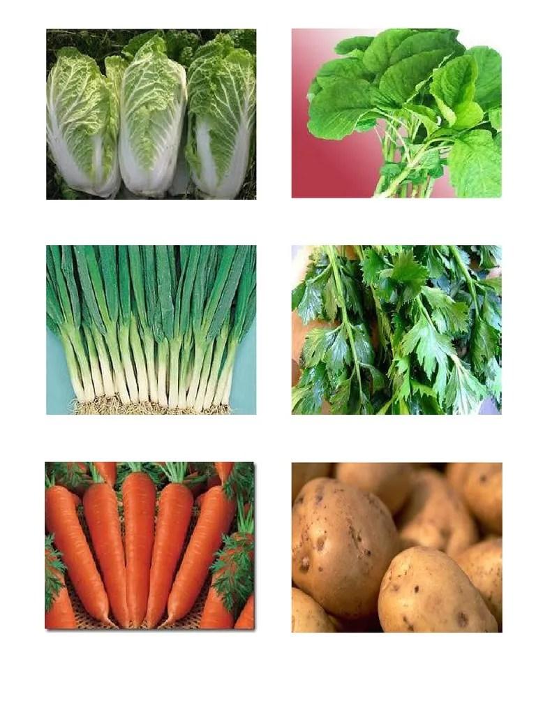 Contoh Sayuran Akar : contoh, sayuran, Tugas, Contoh, Sayuran, Sigit.docx