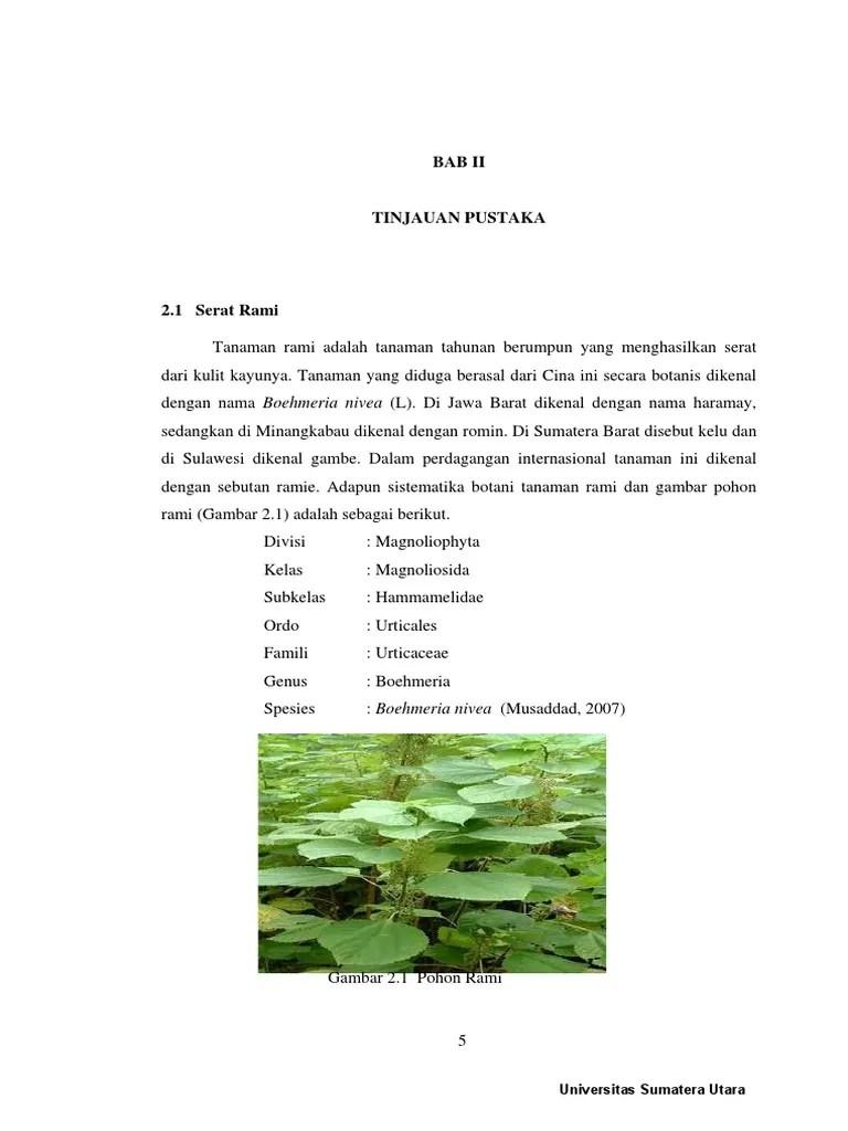 Gambar Serat Flax : gambar, serat, Serat