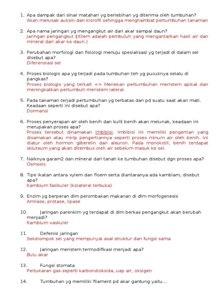 Apa Fungsi Stomata : fungsi, stomata, MALAS,, DIKETAWAIN, ASISTENNYA.docx