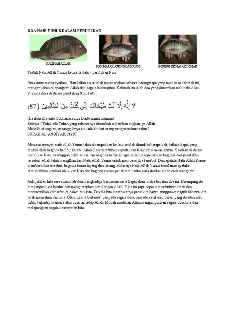 Doa Nabi Yunus Dalam Perut Ikan : yunus, dalam, perut, YUNUS, DALAM, PERUT