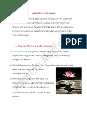Contoh Tumbuhan Hidrofit : contoh, tumbuhan, hidrofit, Laporan, Biologi