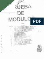 BUJÍAS-MANUAL ORDENES DE ENCENDIDO CHAMPION 2013.pdf