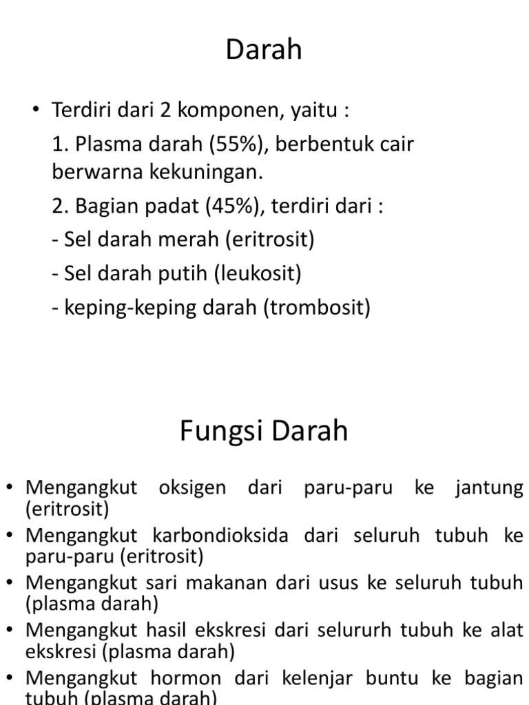 Fungsi Darah Bagi Tubuh : fungsi, darah, tubuh, Fungsi, Darah